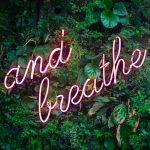 De mooiste yoga reizen van 2019